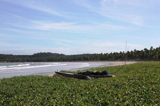 Sao Miguel dos Milagres Beach: praia do morro alagoas