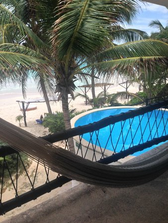 Las Ranitas Eco-boutique Hotel: View from hammock on balcony