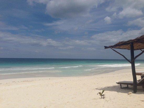 Las Ranitas Eco-boutique Hotel: More beach!