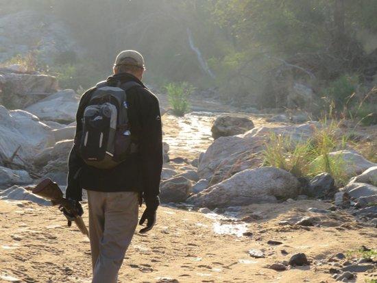 Toro Yaka Bush Lodge : Bush walk with Steve