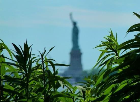 Battery Park : Lady Liberty