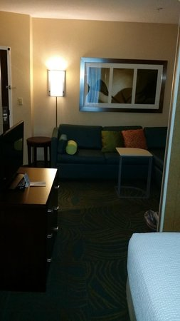 SpringHill Suites by Marriott Annapolis: Living Room