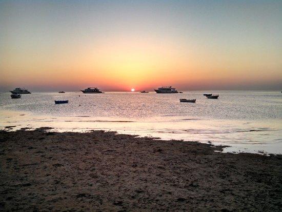 White Shark Travel-Tours: Red Sea sunrise