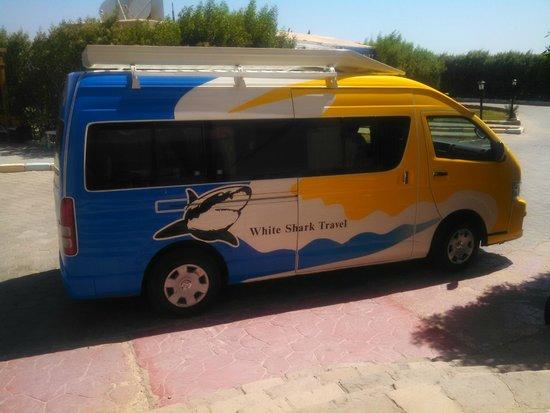 White Shark Travel-Tours: The White Shark Travel van.
