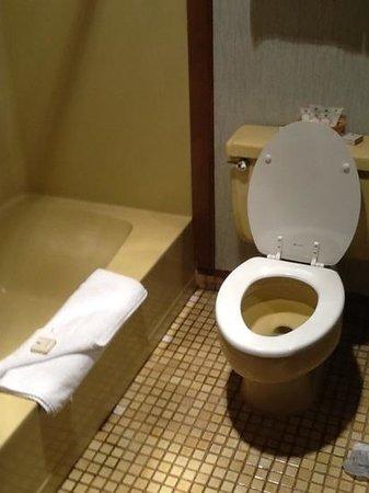 Hi-Tide Oceanfront Inn: the harvest gold bathroom