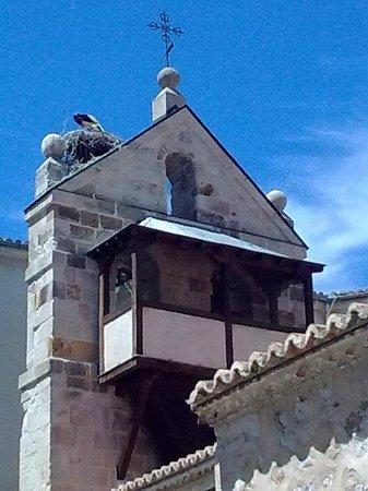 Zamora: San Antolin