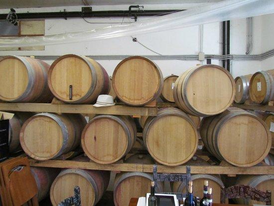 Azienda Agricola Leuta: Leuta wine-tasting
