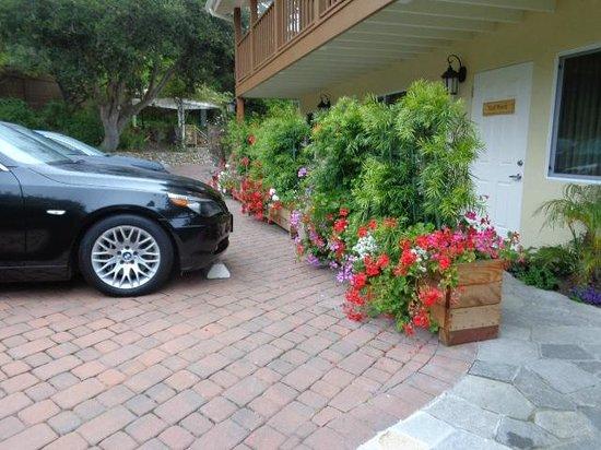 Vendange Carmel Inn & Suites: Parking