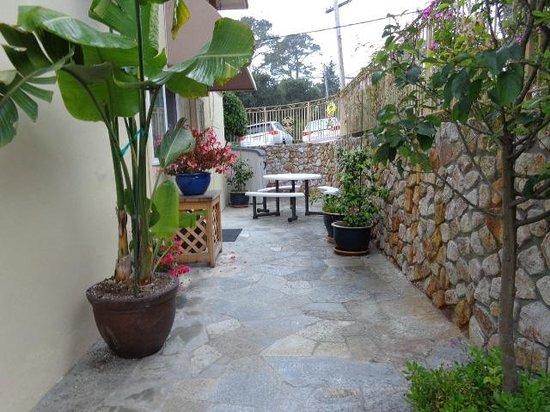 Vendange Carmel Inn & Suites: Walkways