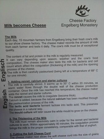 Cheese Factory at Engelberg : Info on the cheese making process