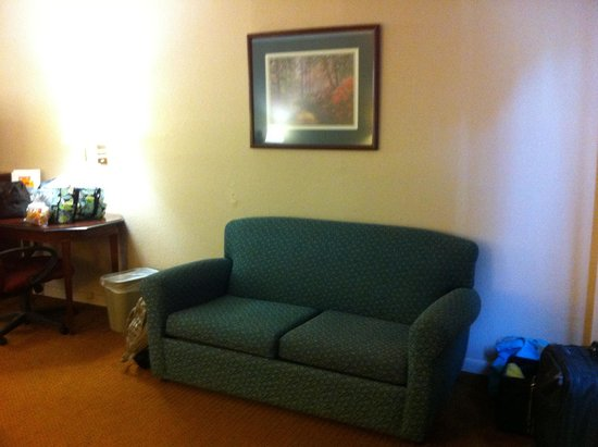Econo Lodge at Ft. Benning: Sleeper couch