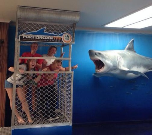 Port Lincoln YHA: Fun in the Hostel cage