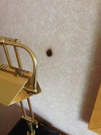 Hudson Valley Resort and Spa : Burn hole on the wall
