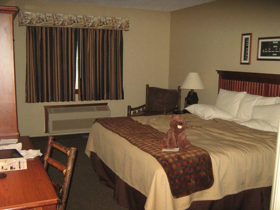 Stoney Creek Inn: Standard King Room