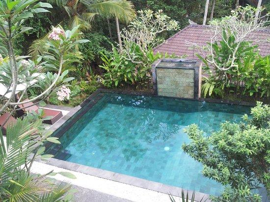 Igna Bungalows: piscina