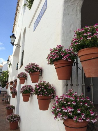 Puente Romano Beach Resort & Spa Marbella: Surrounded by Flowers