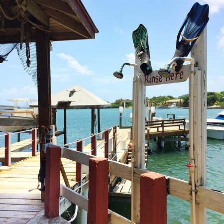 Seagrape Plantation Resort: Seagrape Dive Shop