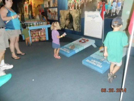Clearwater Marine Aquarium : Kids enjoyed playing the carnival games.