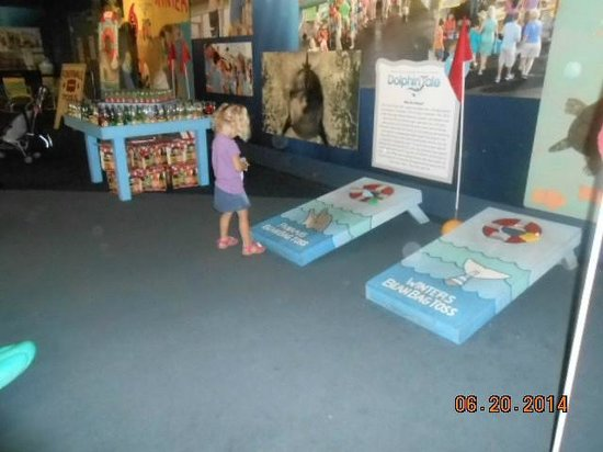 Clearwater Marine Aquarium : Corn Hole is one of the carnival games available for play