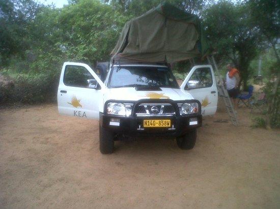 Masama Lodge and Camp Site: KEA