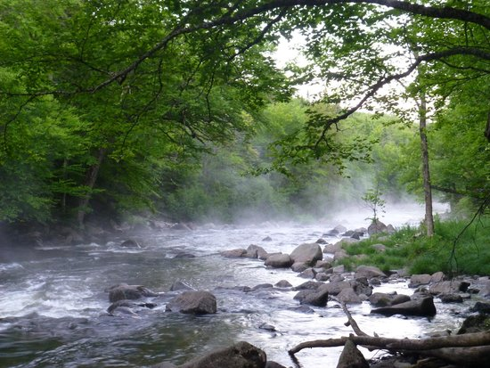 Lake Francis State Park: A nature trail runs near the campground along a rocky river heading into the lake.