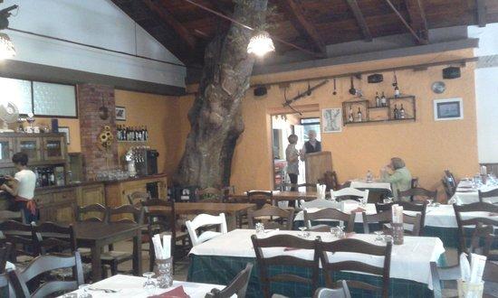 Albergo Bar Ristorante Monte Cucco di Tobia: la sala interna