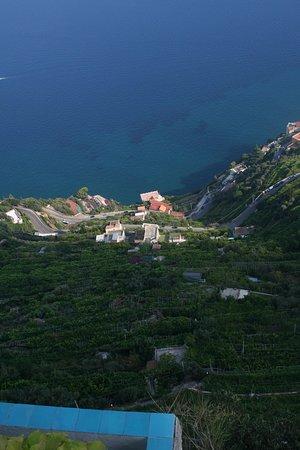 Positano Car Service Private Day Tours: From Villa Cimbrone, Ravello terrace