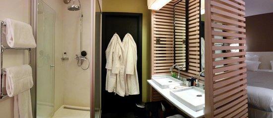 Hotel du Ministere : Shower/Sink Area (Toilet behind door)
