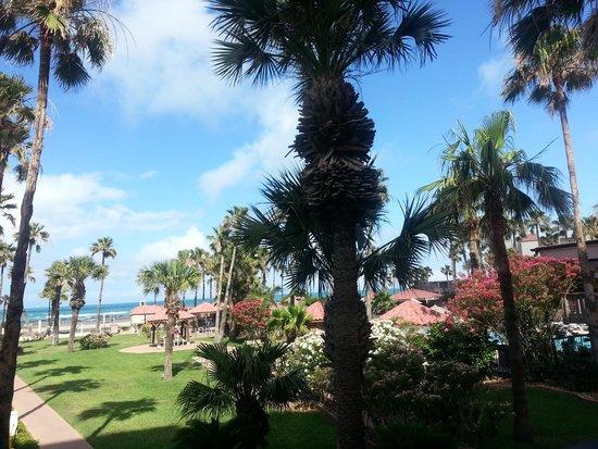 Isla Grand Beach Resort: Garden View from the room.
