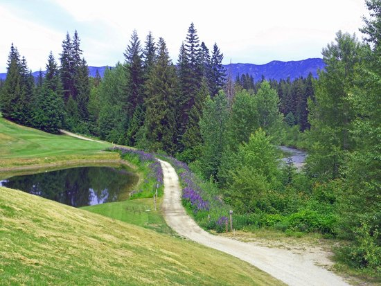 Kahler Glen Golf & Ski Resort: Golf and the river.