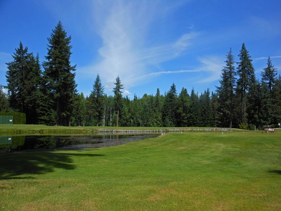 Kahler Glen Golf & Ski Resort: Pond on the Kahler golf course