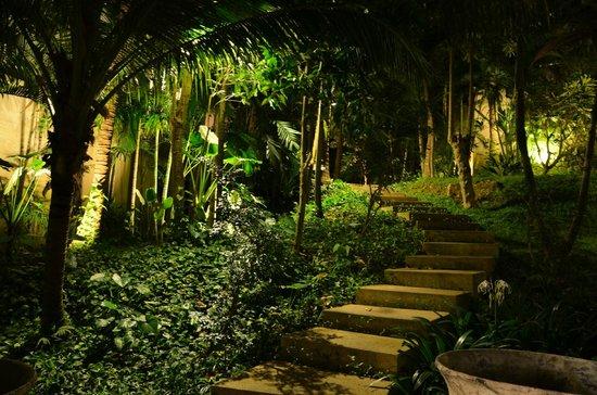 Andara Resort and Villas: garden walk