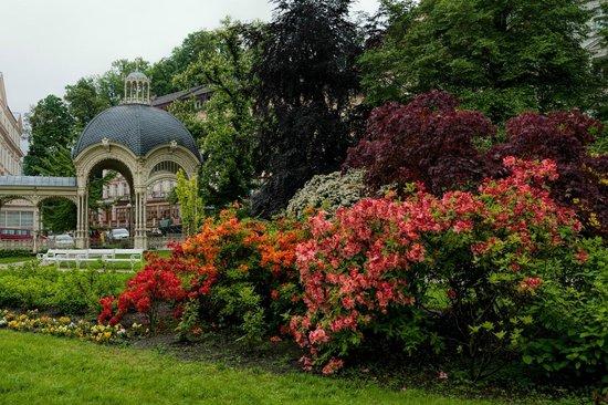 Dvorakovy Sady: Дворжаковы сады