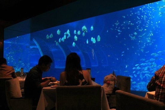 Ocean Restaurant by Chef Cat Cora: Dining with a view