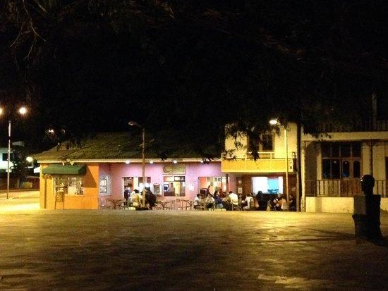 Calypso - Local in the night