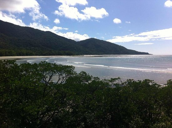 Down Under Tours - Day Tours : Cape Tribulation