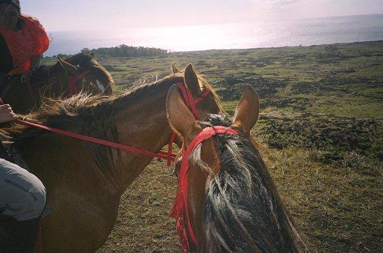 Maunga Terevaka : View