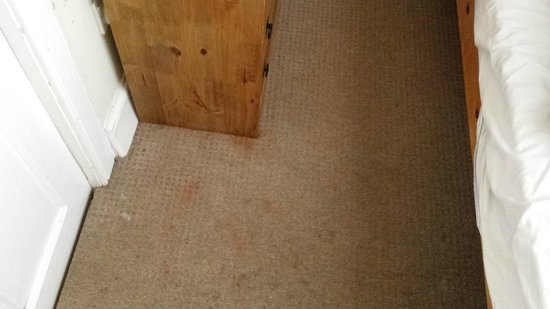 The Mayville Guest House: Filthy carpets