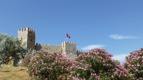 Ayasoluk Castle (Selcuk, Turkey): Top Tips Before You Go ...