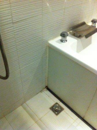 The Icon Hotel : Mold near bathtub