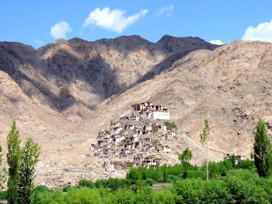 Chemre Gompa Monastery: Chemrey monastery has a stunning location