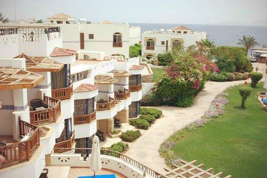 Otium Hotel Amphoras: Территория отеля