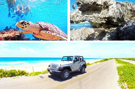 ‪Cozumel Cruise Excursions - Private Tours‬