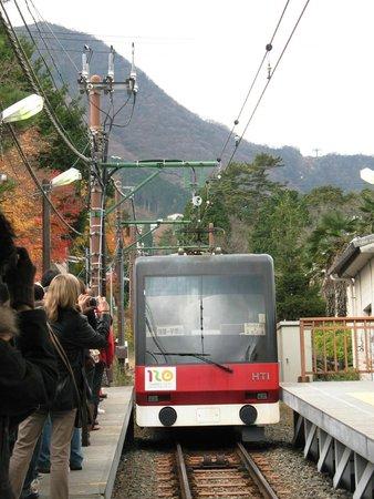 Hakone Tozan Railway: A train arrives