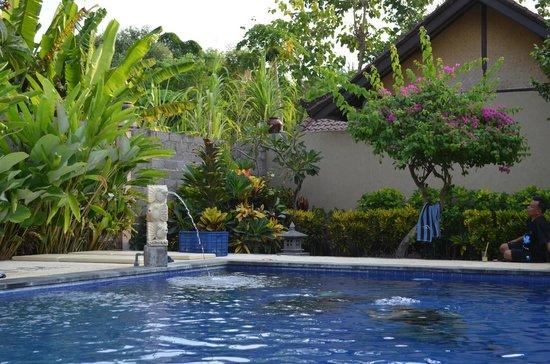Kubuku Ecolodge and Resto: Poolbereich