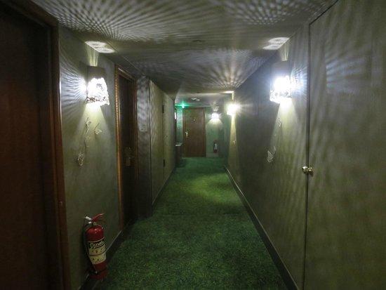 Radisson Blu Park Hotel Athens: Dark hallway