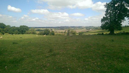 Love2Yurt: View from field