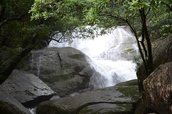 Fishery Falls Holiday Park : Fishery Falls
