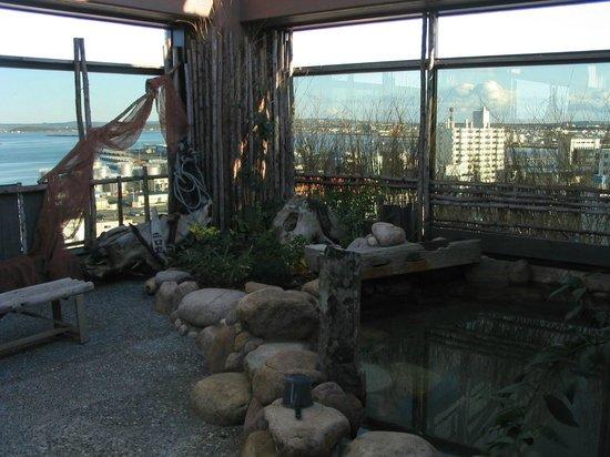 Dormy Inn Wakkanai: Rooftop onsen