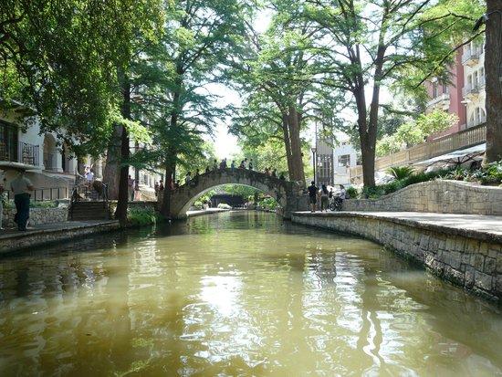 San Antonio River: Shaded path